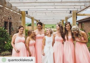 quantock lakes somerset wedding pink bridesmaids instagram