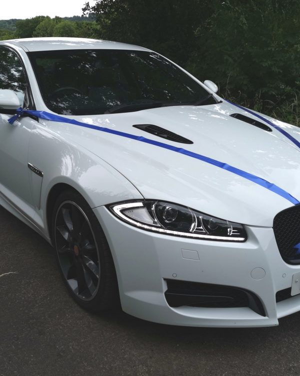 white jaguar xf with blue ribbon decorated for wedding
